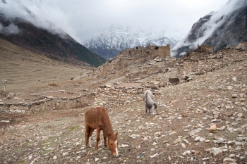 Kyang (3840 m), een voormalig Khampadorp. Foto R. Eckhardt