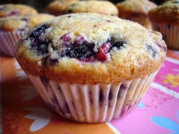 Bosvruchten muffins. Foto Ilse Bekker-Maassen