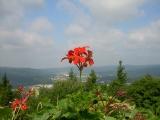 Thüringer Wald. Foto unclekage