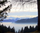 Beierse Alpen, Dorena-wm