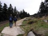 Harz, Harzinfo