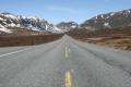 Dovrefjell Noorwegen