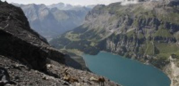 Bergmeer in Zwitserland
