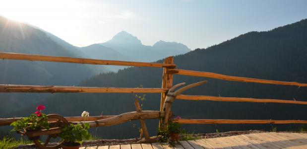 Natur Chalet Rinkwein