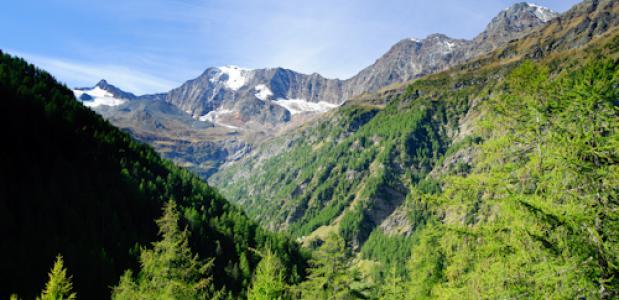 De Walliser Alpen of Pennische Alpen?