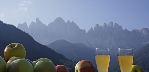 Appels in Zuid Tirol.  Inst. Wirtschaftsförderung Bolzano fotoFrieder Blickle