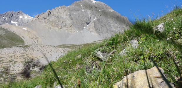 De 2918-meter hoge Piz Amalia in het Zwitserse Engadin (foto: ©Niculin Meyer)