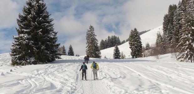 mooie berggebieden winterwandelen