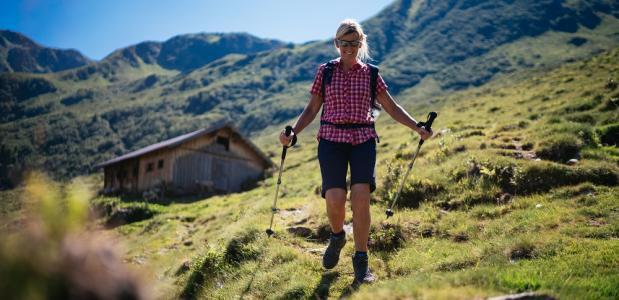 Kitzbuheler Alpen Trail Kat-Walk