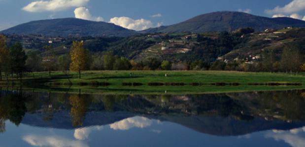 Lariche de condrieu - Rhone. Foto: Region Rhone-Alpes/Jean-Lucrigaux