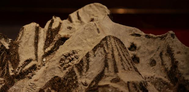 Maquette van de Mont Blanc uit 1799