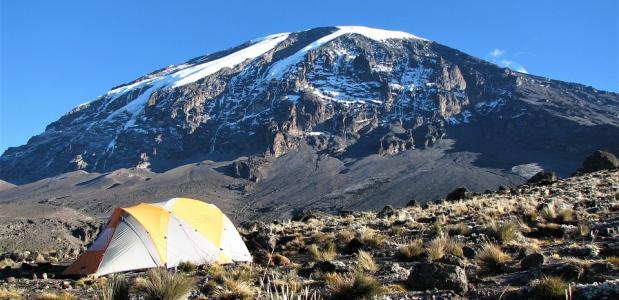 brand kilimanjaro