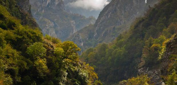 Picos de Europa via Pixabay