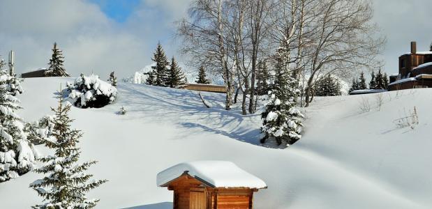 sneeuwdump Alpen