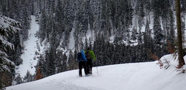 Winterwandelen in de bergen