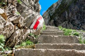 Steinbock Trek