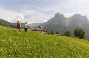 Vier de zomer op een boerderij in Zuid-Tirol,Vier de zomer op een boerderij in Zuid-Tirol,