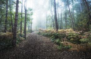 Duurzame en milieuvriendelijke regenkleding