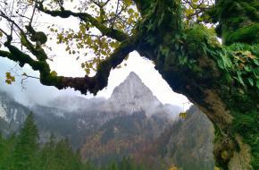 Allgäuer Alpen. Door Leon Receveur
