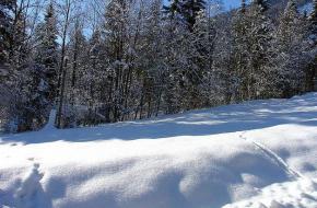Winter in Beieren. Foto Allie Caulfield