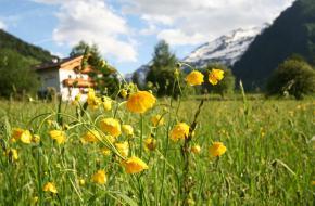 De Berghut in Rauris