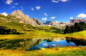 fotowedstrijd groen in de bergen