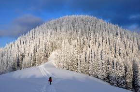 Skiën in Oekraïne. Foto Tilia Maas Geesteranus