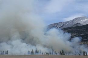 bosbrand voorkomen