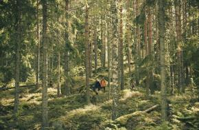 Haglöfs: Zweedse betrouwbaarheid