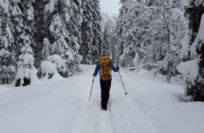 Koude voeten tijdens een winterwandeling, hoe voorkom je ze?