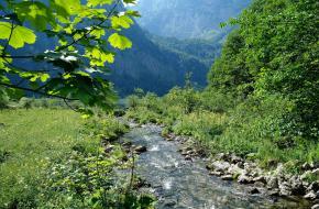 Bergbeek, helder water