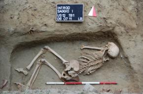 Het skelet van Introd