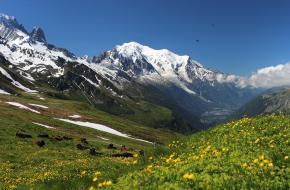 Mont Blanc Massief