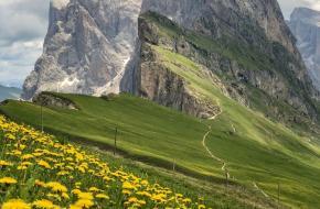 Fotowedstrijd lente in de bergen