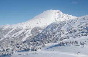 Josh Dueck skiet graag in de Rocky Mountains. Foto 5of7