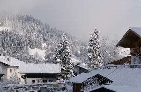 Sneeuw. Foto Fugue