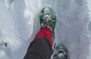 Sneeuwschoenwandelen biedt rust en natuur