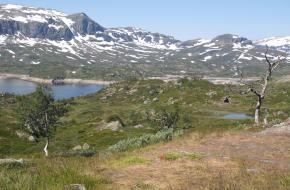 Uitzicht op het landschap in Noorwegen. Foto A. Visscher