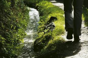 Waalwege.Südtirol Marketing/Helmuth Rier