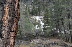 Yosemite National Park ©bjo